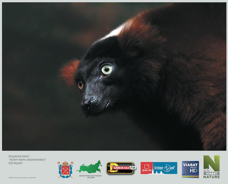 В Петербурге прошла выставка фотографий о природе и экологии.