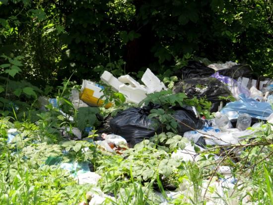 Тува борется с мусором при помощи фотографий.